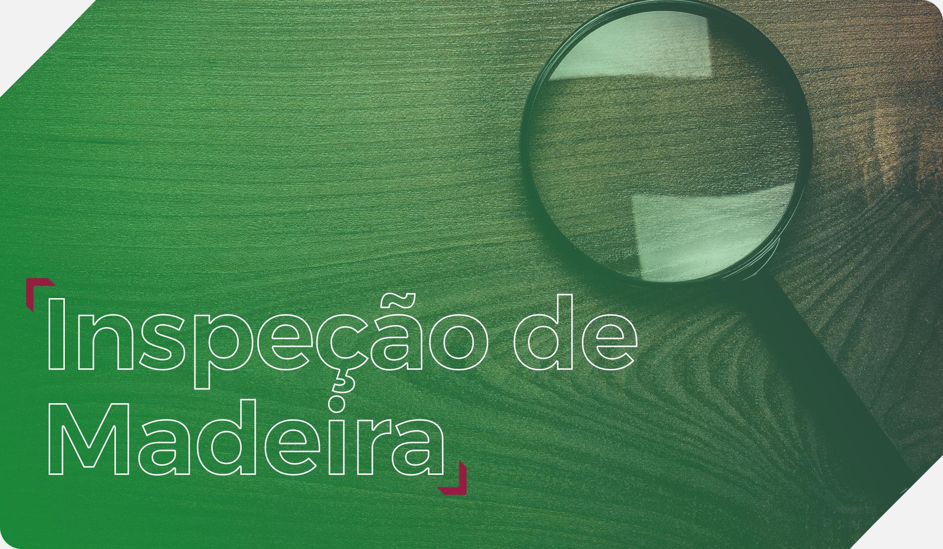 Inspeção de Madeira Importação PM Logística